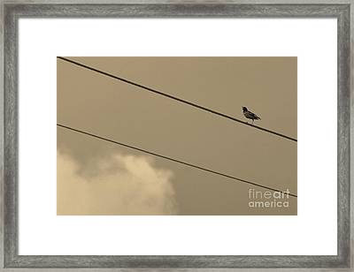 2 Wire Framed Print