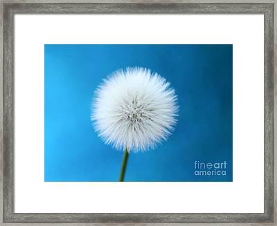 Wish In Blue Framed Print by Krissy Katsimbras