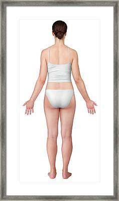 Woman Posterior View Framed Print by Qa International, Universal Images Group/science Photo Library
