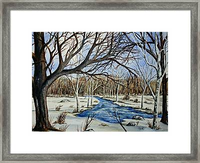 Wonderful Winter Framed Print