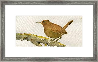 Wren Bird Framed Print