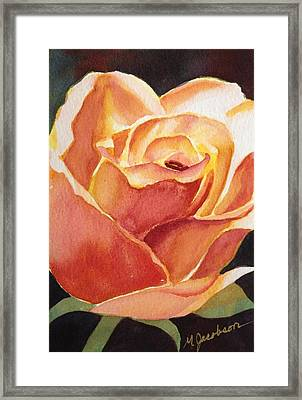 Yellow Rose Framed Print by Marilyn Jacobson