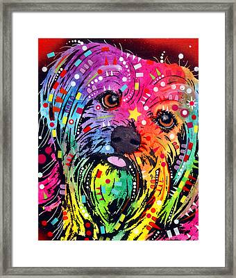 Yorkie Framed Print by Dean Russo