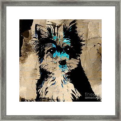 Yorkshire Terrier Framed Print by Marvin Blaine