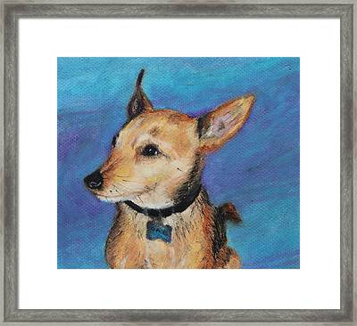 Framed Print featuring the painting Zack by Jeanne Fischer
