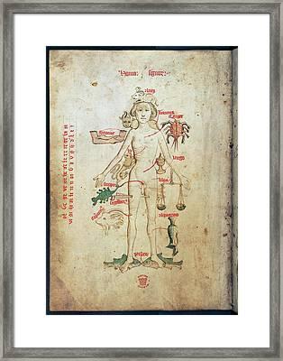Zodiac Man Framed Print