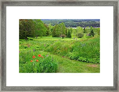 Canada, New Brunswick Framed Print by Jaynes Gallery