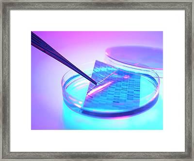 Dna Research Framed Print by Tek Image