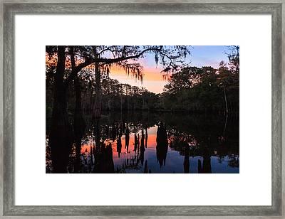 Fisheating Creek Framed Print