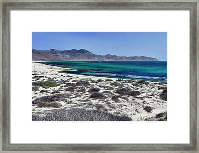 Isla De Espiritu Santo, Baja, Mexico Framed Print by Mark Williford