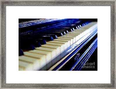 MSG Framed Print