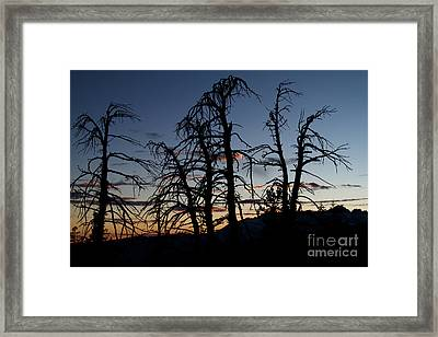 Sierra Autumn Framed Print