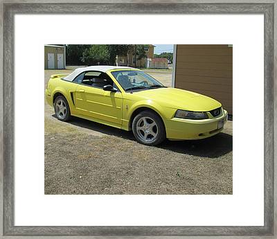 2003 Mustang Framed Print by Rosalie Klidies