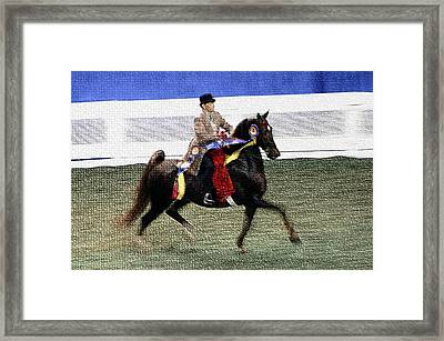2008-a World Championship Horseshow - Louisville Ky Framed Print by Thia Stover