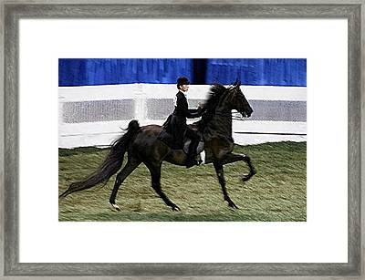 2008-d-world Championship Horse Show - Louisville Ky Framed Print by Thia Stover
