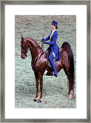 2008-g World Championship Horse Show - Louisville Ky Framed Print by Thia Stover