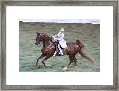 2008-h World Championship Horse Show - Louisville Ky Framed Print by Thia Stover