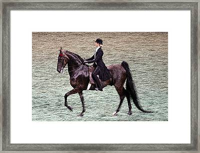 2008-i World Championship Horse Show - Louisville Ky Framed Print by Thia Stover