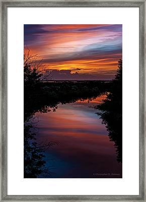 20121113_dsc06195 Framed Print
