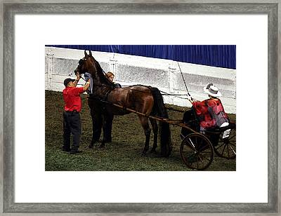 Winner 2014 Wchs - Louisville Ky  Asb Adult Show Pleasure Driving Framed Print by Thia Stover