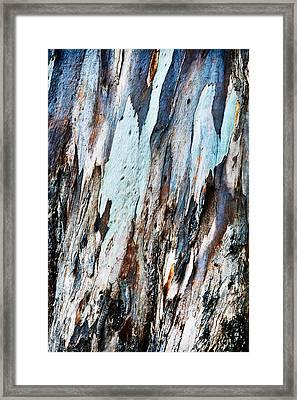 20150216181150fla3699c1p Framed Print