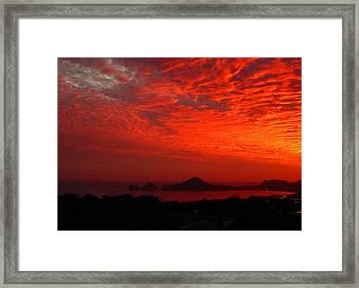 202 Framed Print