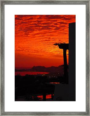 203 Framed Print