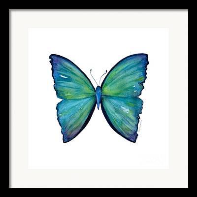 Nymphalidae Framed Prints