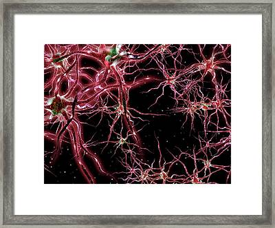 Neural Network Framed Print
