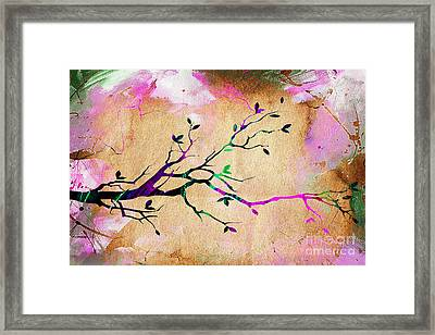 Tree Branch Collection Framed Print by Marvin Blaine
