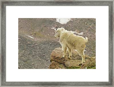 Usa, Colorado, Mount Evans Framed Print by Jaynes Gallery