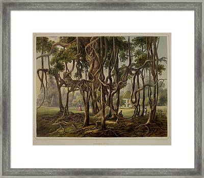 Views Of Calcutta And Its Environs Framed Print