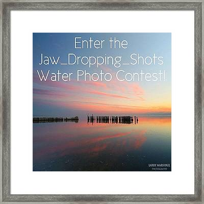 Instagram Photo Framed Print by Larry Marshall