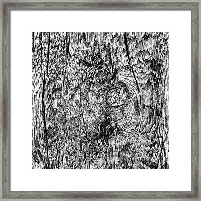Wooden Post B 'n' W Framed Print