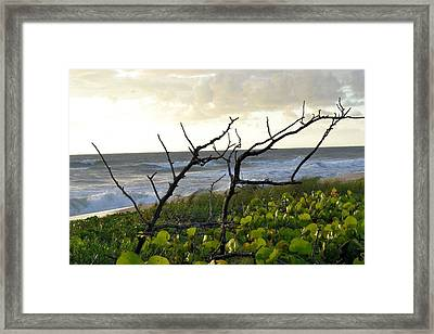 Beach Framed Print by William Watts