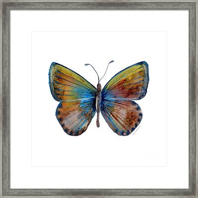 22 Clue Butterfly Framed Print