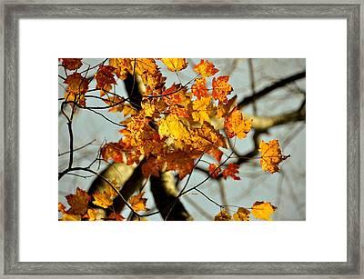 22nd Of September Framed Print by JAMART Photography