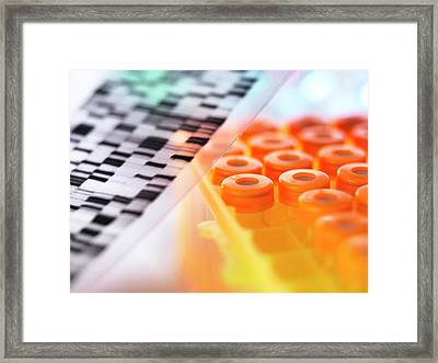 Dna Research Framed Print by Tek Image