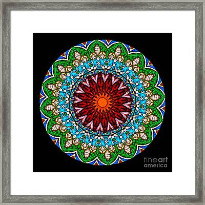 Kaleidoscope Stained Glass Window Series Framed Print
