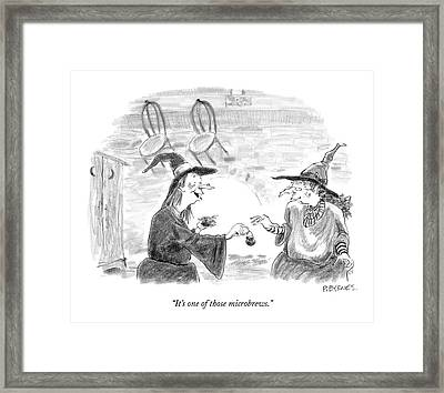 It's One Of Those Microbrews Framed Print