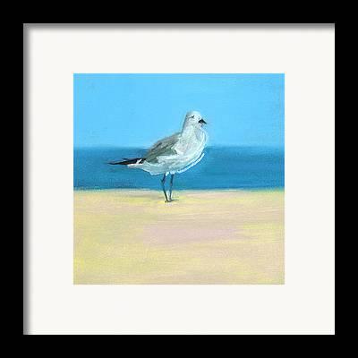 Shore Bird Framed Prints
