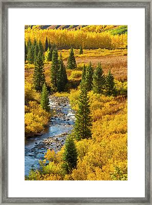 Usa, Colorado, Gunnison National Forest Framed Print by Jaynes Gallery