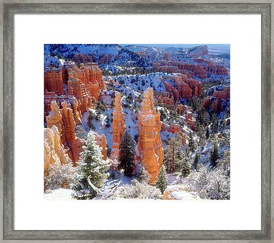 Usa, Utah, Bryce Canyon National Park Framed Print by Jaynes Gallery