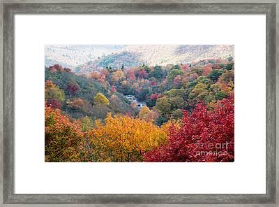 2503 Upper Falls At Graveyard Fields Framed Print by Stephen Parker