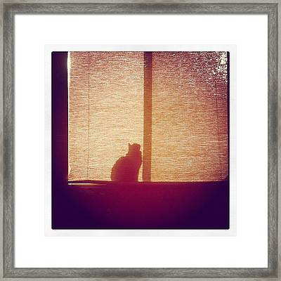 He Found The Light Framed Print by April Moen