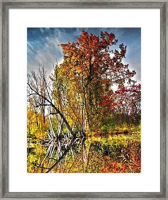 26. September - Upside Down Framed Print by Juergen Weiss
