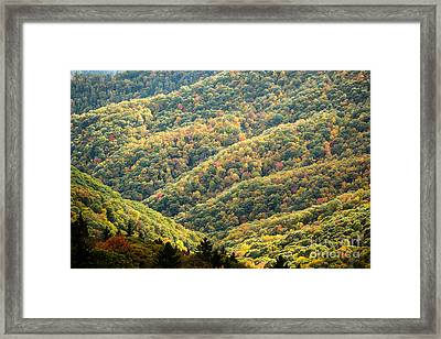 2678 Blue Ridge Parkway Framed Print by Stephen Parker
