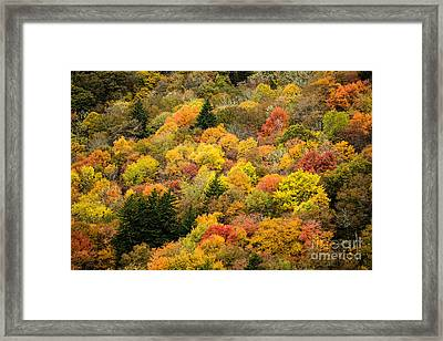 2679 Blue Ridge Parkway Framed Print by Stephen Parker