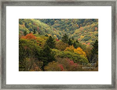 2681 Blue Ridge Parkway Framed Print by Stephen Parker