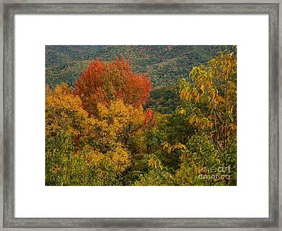 2689 Blue Ridge Parkway Framed Print by Stephen Parker